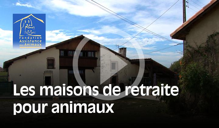 Fondation Assistance aux Animaux I durée 4' I 2014